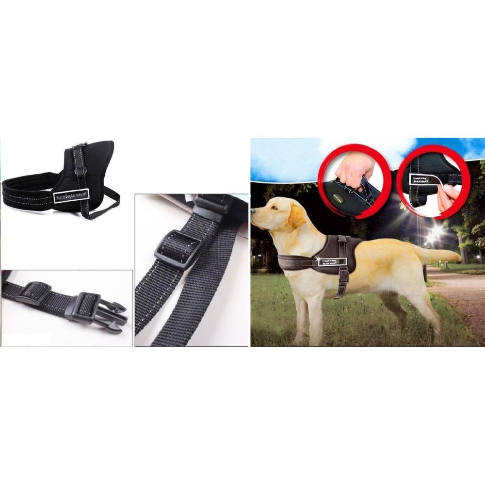 Guinzaglio addestra cani imbracatura collare cane sports for Articoli per cani