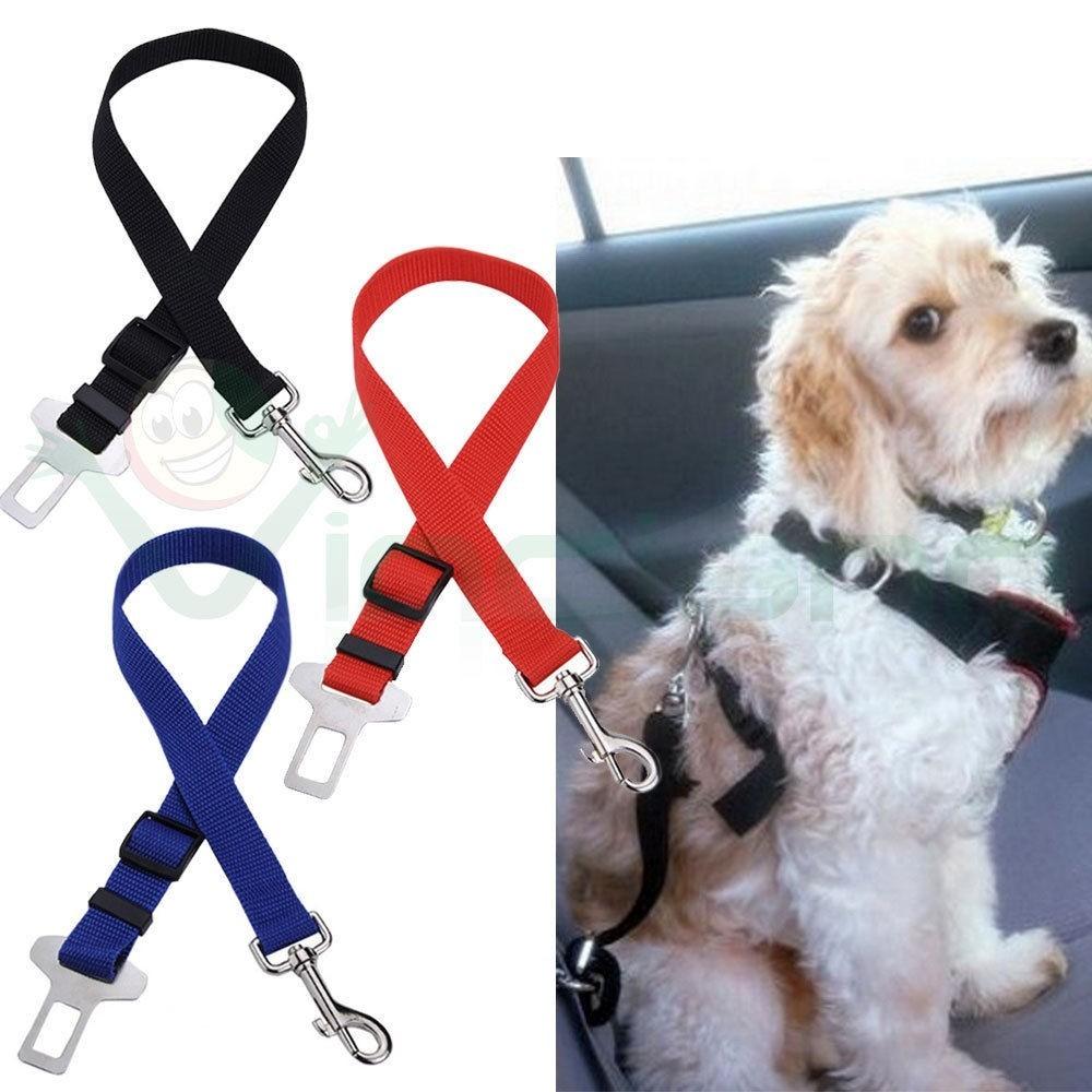 guinzaglio sedile auto cintura di sicurezza collare per