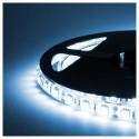 STRIP SMD BOBINA STRISCIA LED 5050 FLESSIBILE 5MT ADESIVA INTERNO ESTERNO IP65