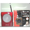 GOLON RX-188MIC RADIO AM FM PORTATILE CON INGRESSO SD USB SPEAKER LED KARAOKE