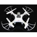 Drone All Round - TERMINATOR 105HV + Videocamera HD