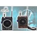 RADIO FM KARAOKE USB CASSA SPEAKER MP3 SD RICARICABILE CON TORCIA E MICROFONO