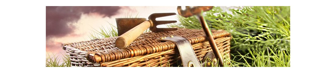 Giardino e arredamento esterni