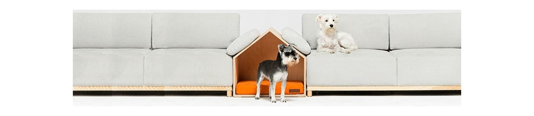 Vendita Prodotti e Accessori per Cani Prezzi Online